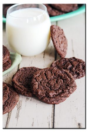 Opposite of Fancy {Recipe: Plain & Extraordinary Chewy Chocolate Cookies}