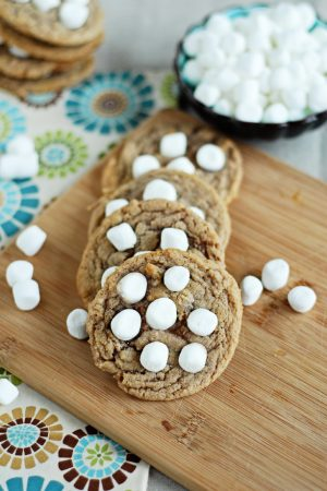 Spring Optimisim {Recipe: Hot Chocolate Cookies with Marshmallows}