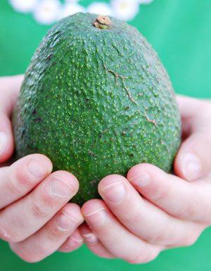 California Avocados Direct {Recipe: Avocado Dip}