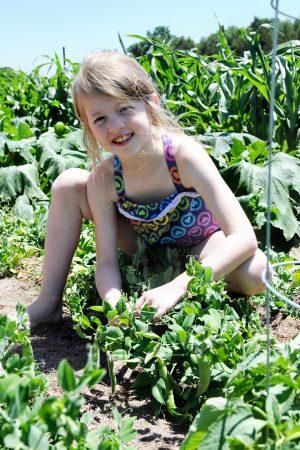 Raising Service Oriented Kids – VolunteerSpot
