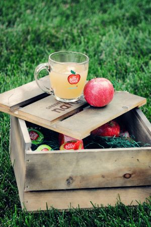 A Touch of Fall {Apple Cider Recipe Roundup}