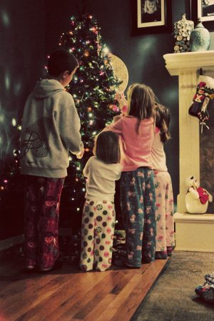 Picture the Holidays {The View From Here}