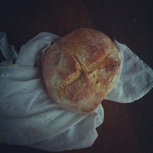 Artisan Bread in Five Minutes a Day Cookbook