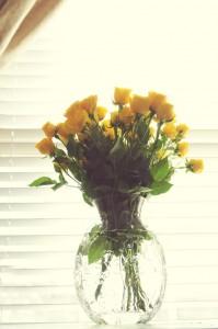 Jan Flowers