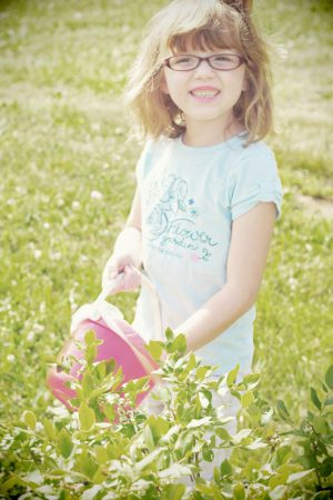 Berry Picking and Jam Making {Giveaway: Ball Canning Discovery Kit from Kmart}