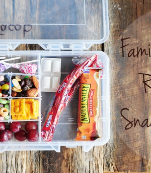 Family Vacation Road Trip Snack Kit for Kids