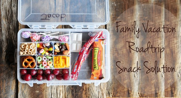 Family Vacation Road Trip Snack Kit For Kids Dine And Dish