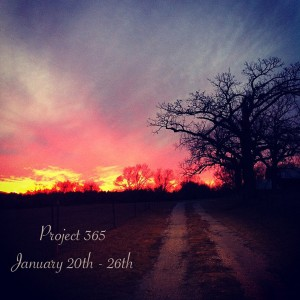 Project 365 2013: Our Life in Photos January 20th – 26th