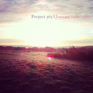 Project 365 2013: Our Life in Photos January 13th – 19th