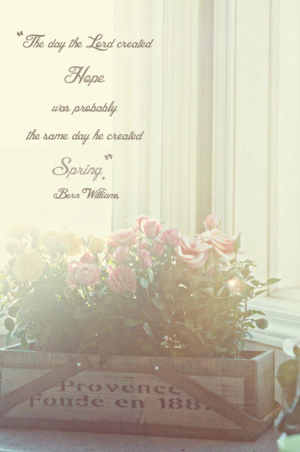 Harry & David Mini Roses Giveaway