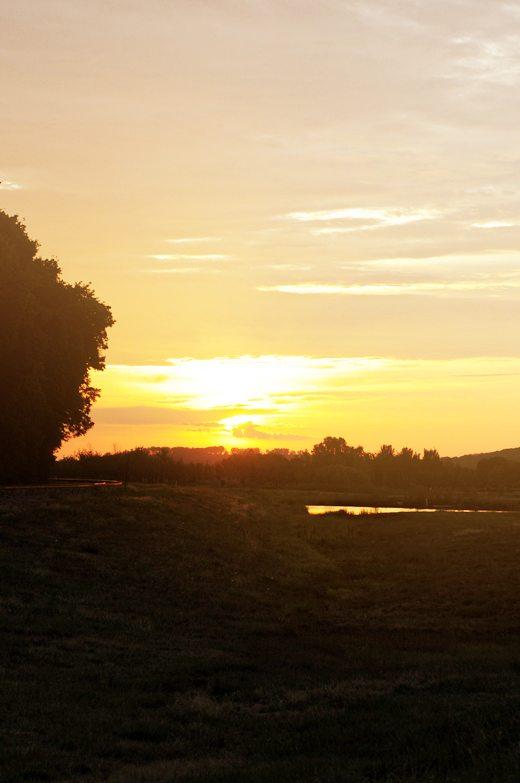 7-8-Sunset