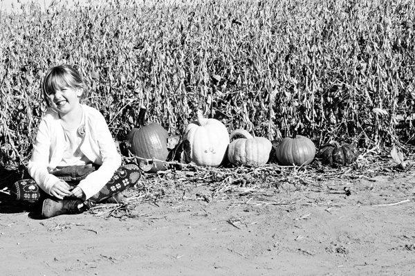 Oct-23rd-Ella-Pumpkins
