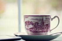 November 5th Tea Cup