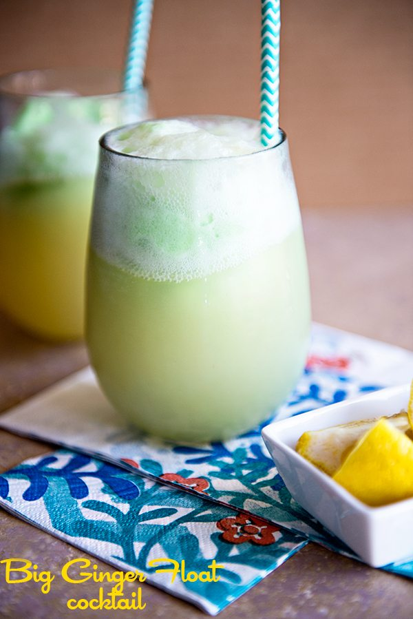 Big Ginger Float Cocktail - the perfect summer sipper from dineanddish.net