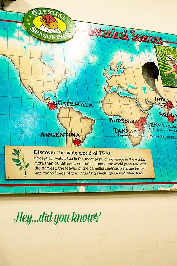 Tea-Fact