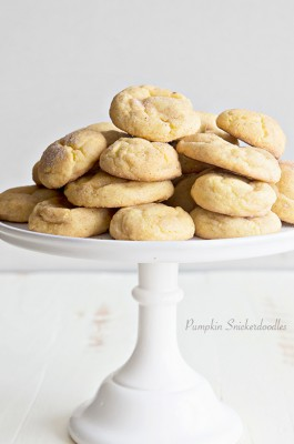 Pumpkin Snickerdoodle Recipe