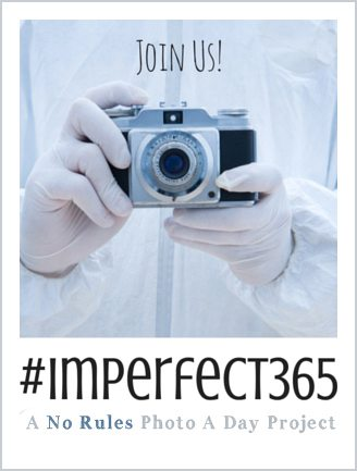 Join the Perfectly Imperfect Project 365 Photo a Day Project