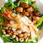 Houlihan's Copycat Asian Chop Chop Chicken Salad Recipe on dineanddish.net