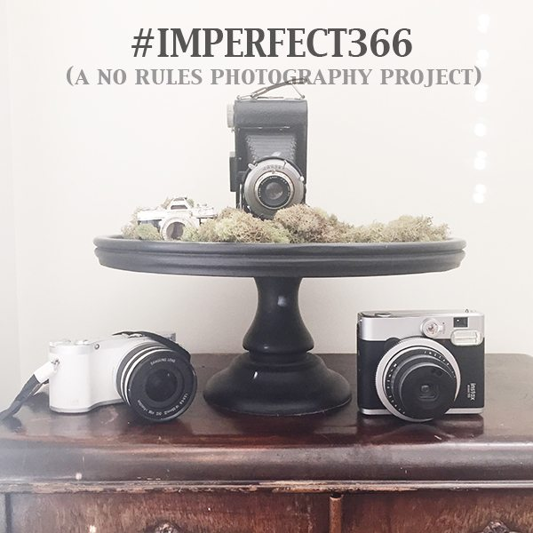 Imperfect 366 a no rules photography project
