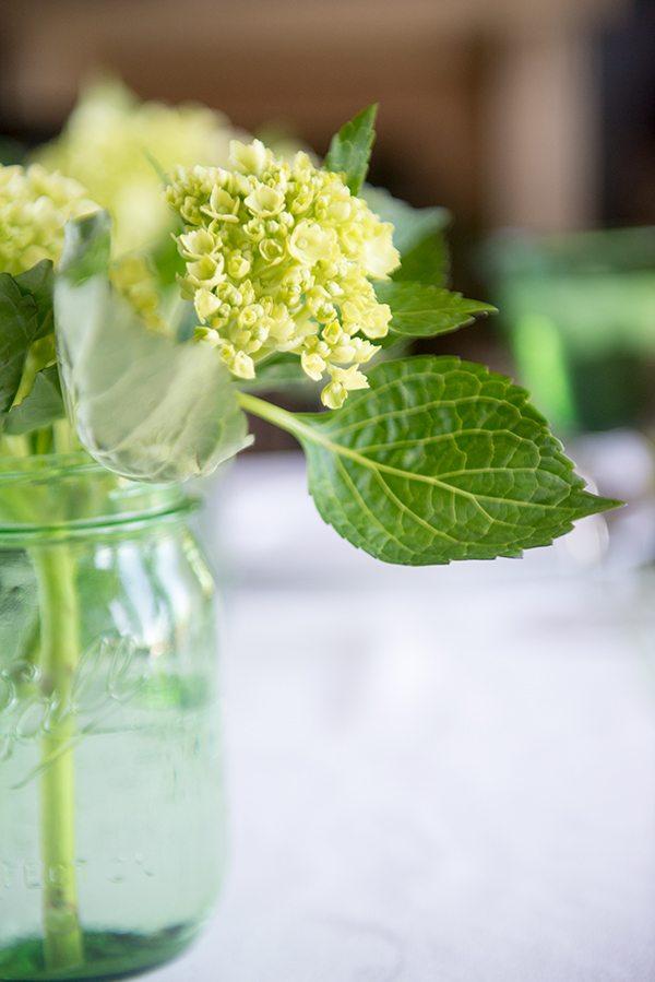 Flowers for Dinner En Green
