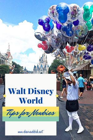 Disney Vacation Tips for Newbies