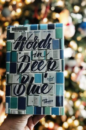 Words in Deep Blue by Cath Crowley book review. This ended up being one of my favorite books of 2017!