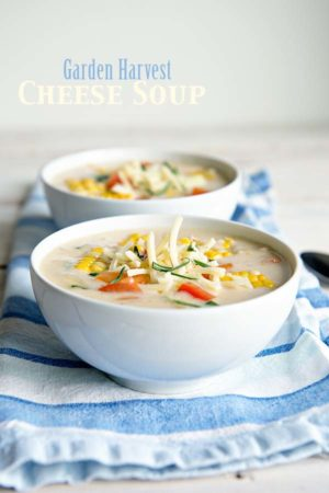 Garden Harvest Cheese Soup Recipe