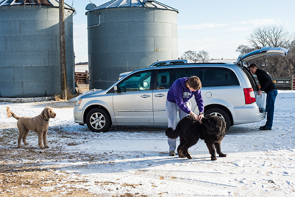 2 dogs, van and van being loaded in Iowa